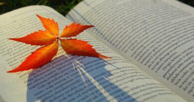 Scelti per voi. Romanzi in cui rifugiarsi nelle fredde sere d'autunno.